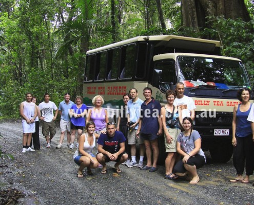 Bus trip to Daintree