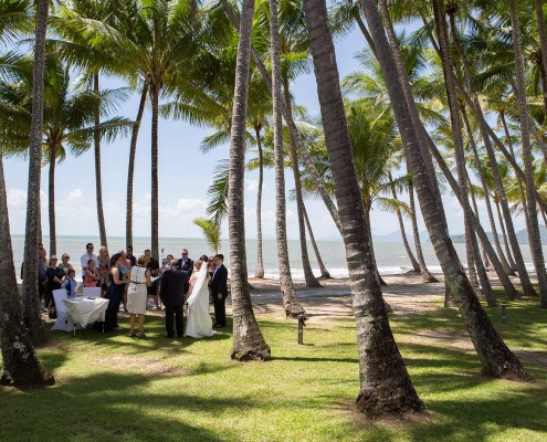 palm cove weddings