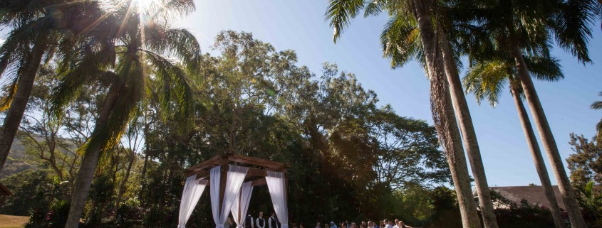Palm Cove Wedding - Paradise Palms