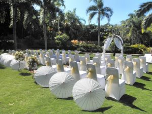 palm cove wedding suppliers